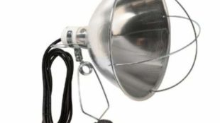 Infrared Heat Lamps